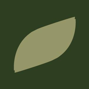 Il disegno della foglia verde che rimanda il concetto di natura per l'etichetta del nuovo spumante biologico Rocca dei Forti